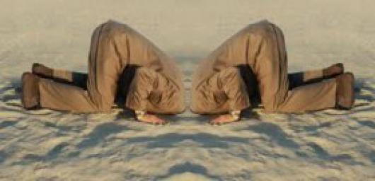 makelaar-met-kop-in-het-zand_530_256_s_c1_smart_scale