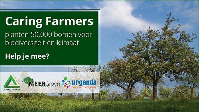 Groene boeren planten 50.000 bomen